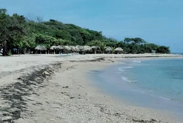 northwest beach view